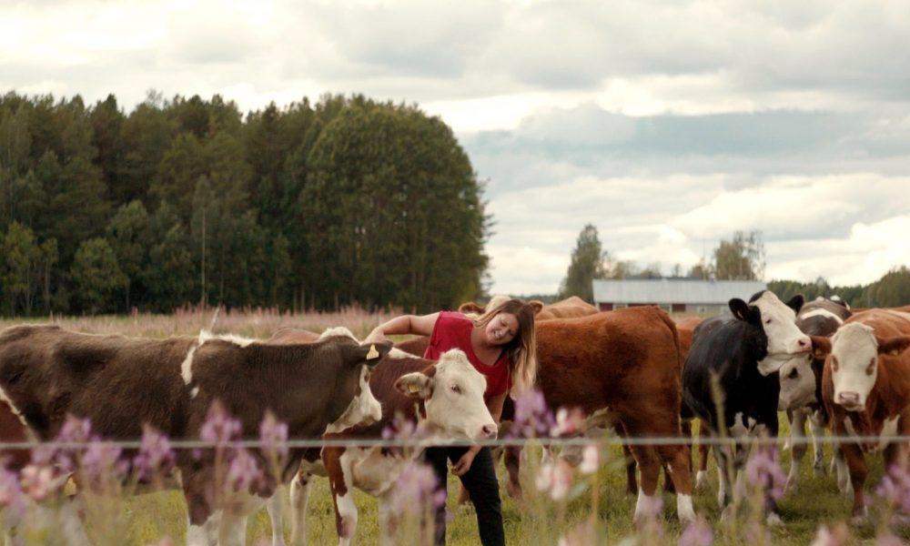 En kvinna står i en kohage och klappar korna