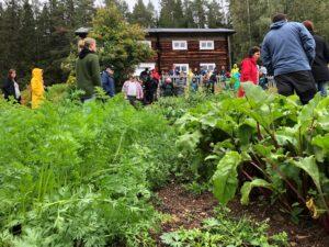 Trädgårdsland och personer som går omkring i trädgården