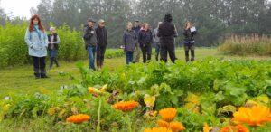 En grupp personer samlade framför en odling med grönsaker och blommor