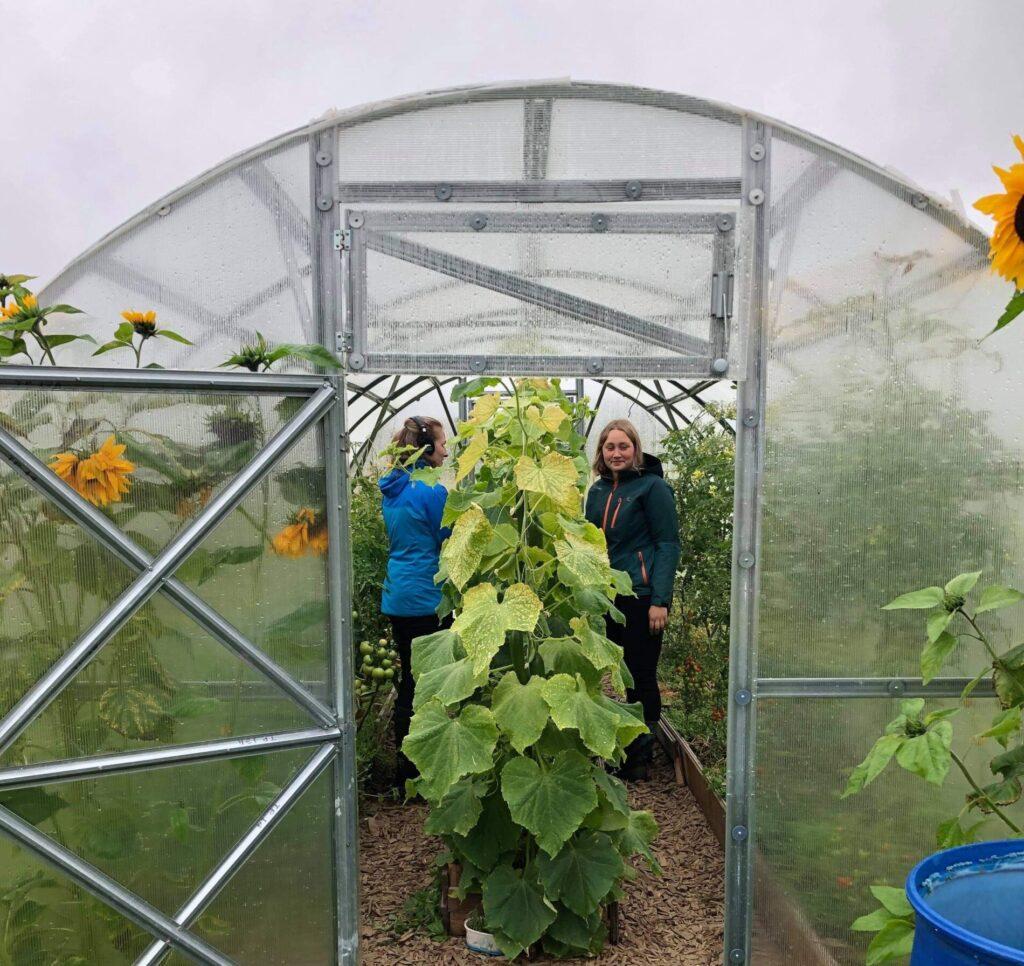 Poddinspelning i växthus