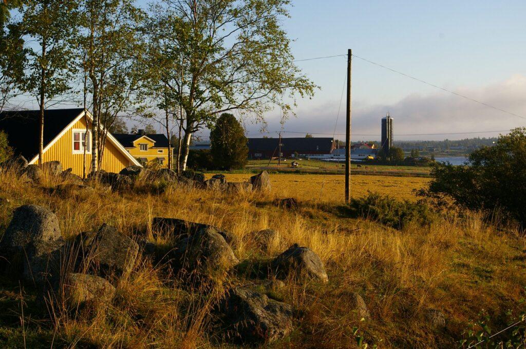 Vy över ett jordbrukslandskap. Ett gult bostadshus i förgrunden och ladugårdsbyggnad i bakgrunden