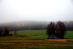 Dimming vy över fält och skog