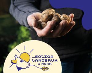 Hand som håller i potatis med soliga lantbruk i norra logotype infälld