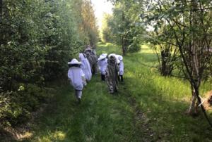 En grupp unga personer går längs en stig klädda i biodlardräkter med hatt